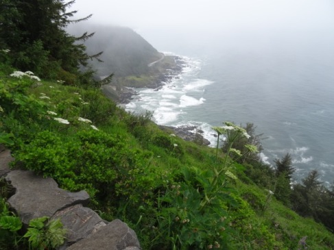 Foggy view to Cooks Chasm area