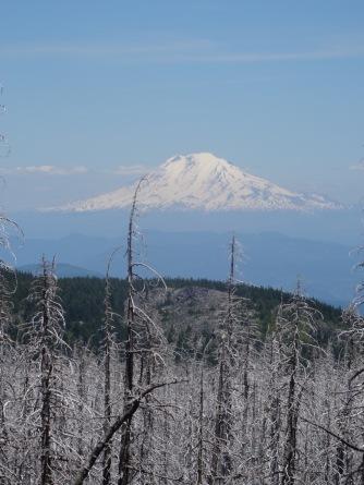 Mt. Adams, floating like Carl Sandburg's Village of