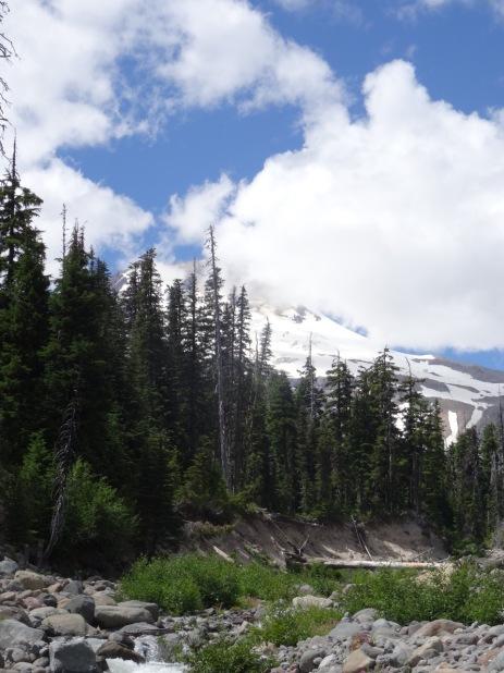 Mt. Hood from Newton Creek