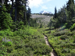 Heading into upper Wy'East Basin