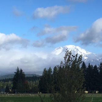Mt Adams from Trout Lake