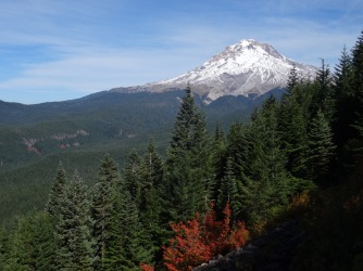View back to Mt Hood from the open scree slope