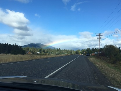Rainbow, Trout Lake, WA