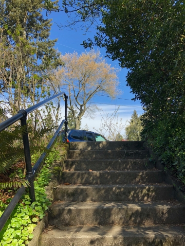 Alameda Ridge stairs