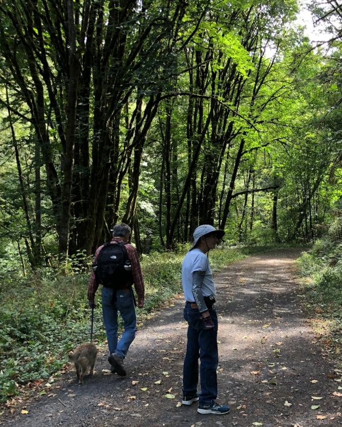 Saltzman Road, Forest Park